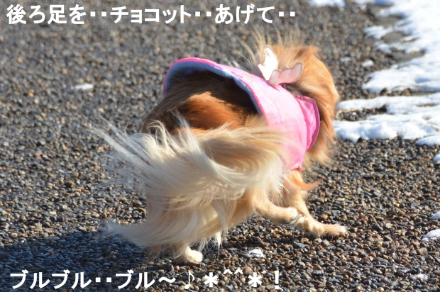 DSC_6824_01.jpg
