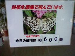 HNI_0041.jpg