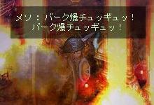 2010-05-23崖メソ10
