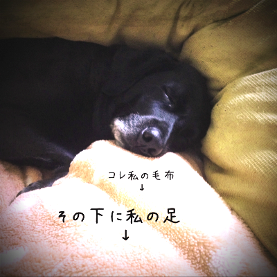 love20131120.png