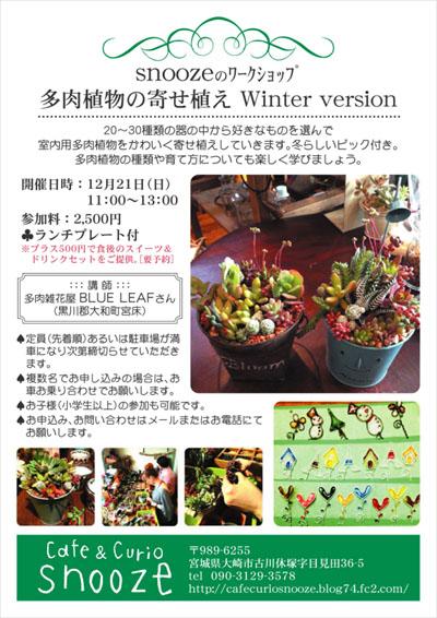 WS多肉寄せ植え2014冬