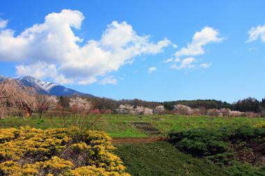 02桜と八ヶ岳