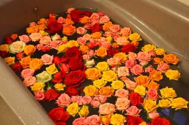 11バラ風呂