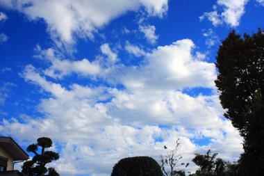 09空 のコピー