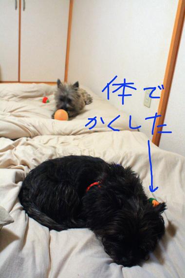 02じゃま のコピー