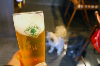 05ビール のコピー