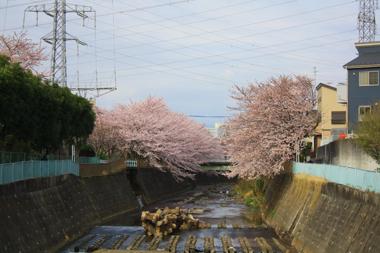 05恩田川 のコピー