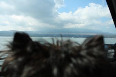 03山中湖 のコピー