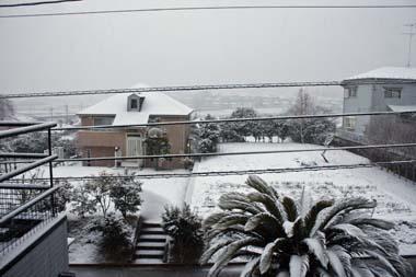 02雪 のコピー