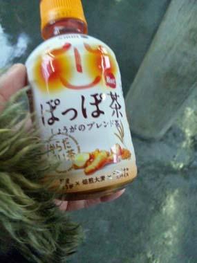 07ぽっぽ茶