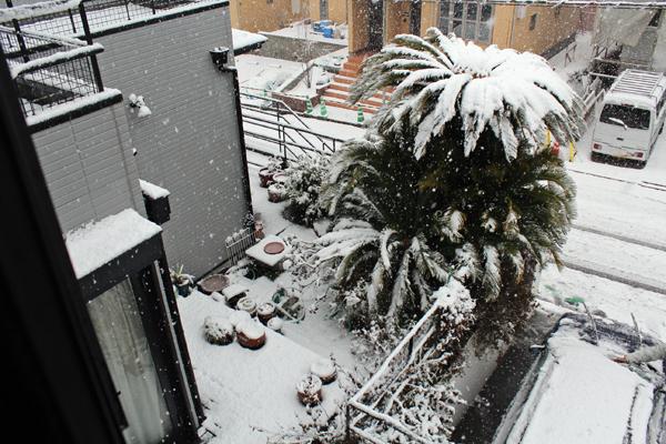 01雪 のコピー