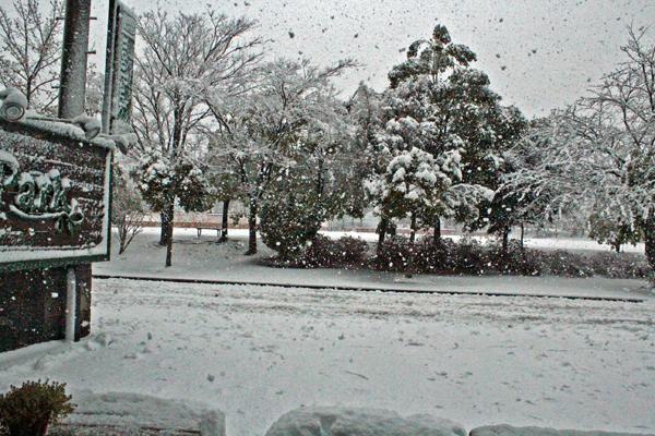08雪 のコピー