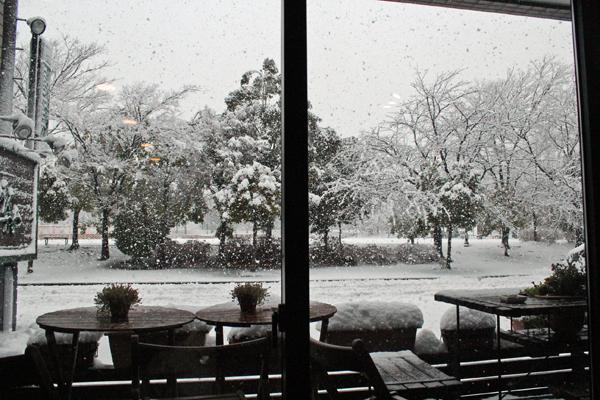 07雪 のコピー