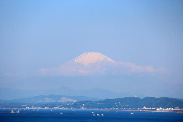 08富士山 のコピー