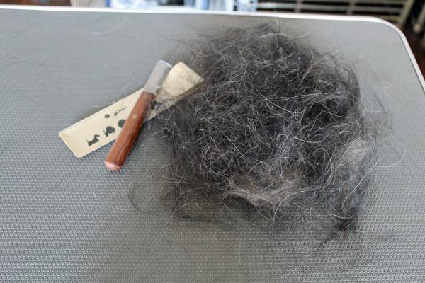 05チャー毛 のコピー