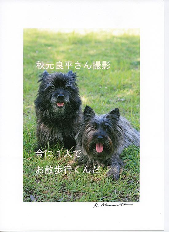 秋元さんチャールー0040000