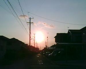 SUNP0025[1]