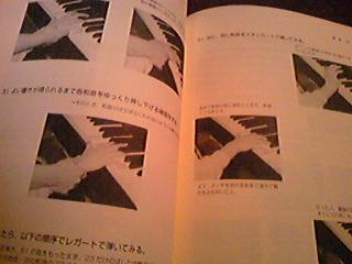 Image708.jpg