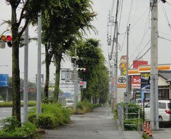 20110613d.jpg