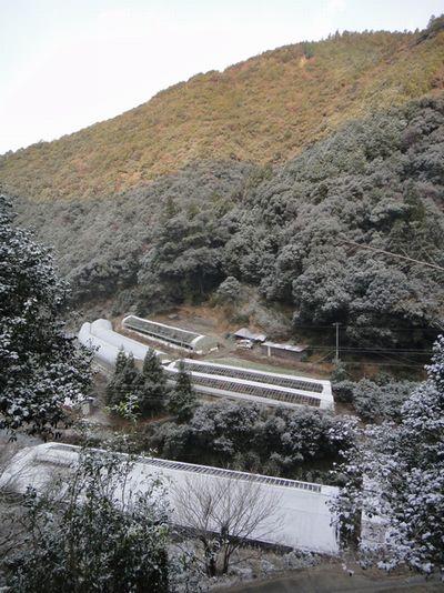 20120105a.jpg