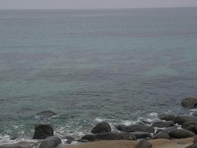 2010.05.09母の日3