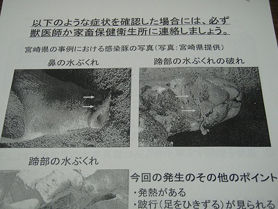2010.06.28有害鳥獣3