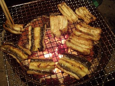2010.10.24ウナギのかば焼き2