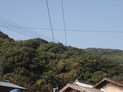 2010.11.14久しぶりの有害鳥獣捕獲2