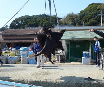 2011.03.28最後の戦い9