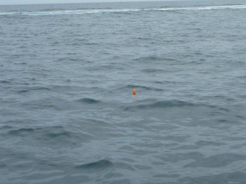 2011.05.21ボート釣り9