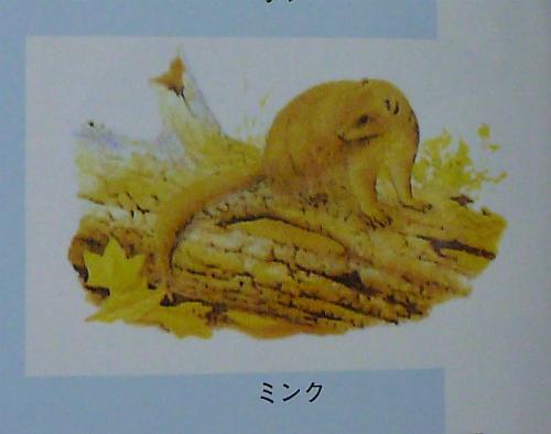 20110.7.29罠猟11