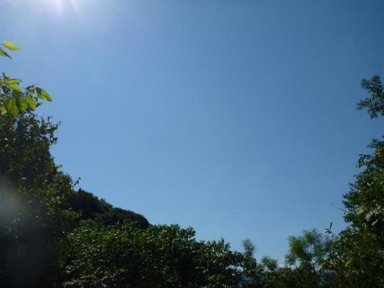 2011.10.09猟欲2