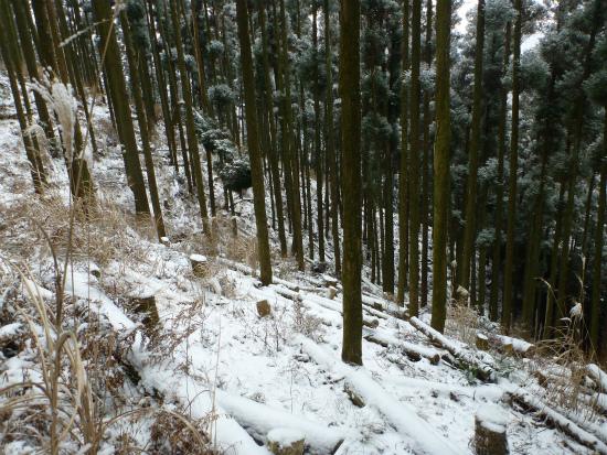 2012.02.19雪中行軍5