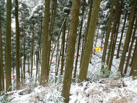 2012.02.19雪中行軍10
