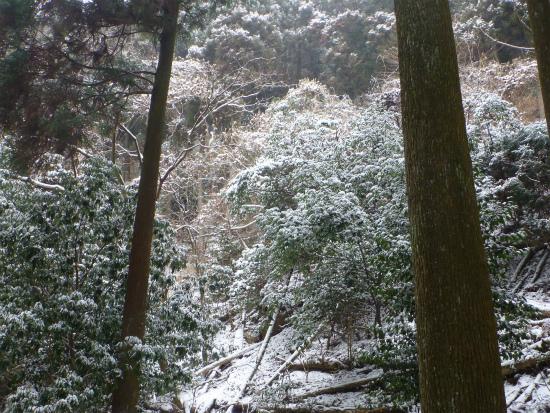 2012.02.19雪中行軍11