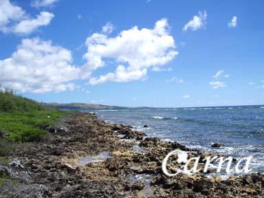 グアム/ココス島でサイクリング5