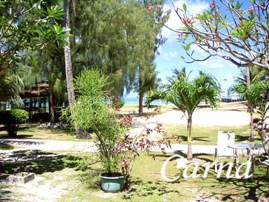 グアム/ココス島でサイクリング8