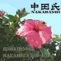 nakadashi0002.jpg