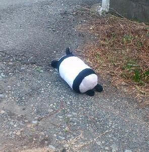パンダさん②