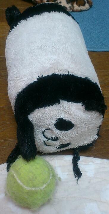 パンダさんとボール