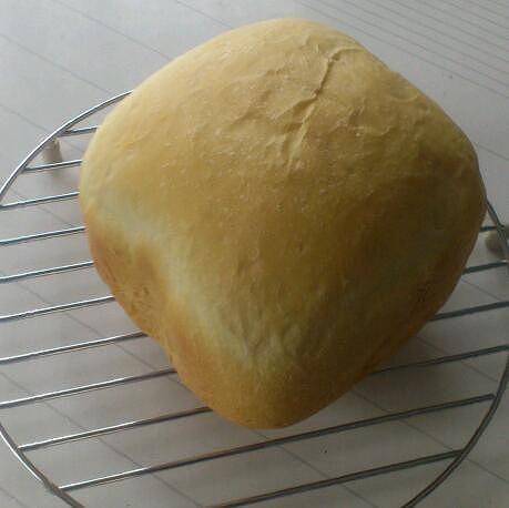 キャッチのパン20130420
