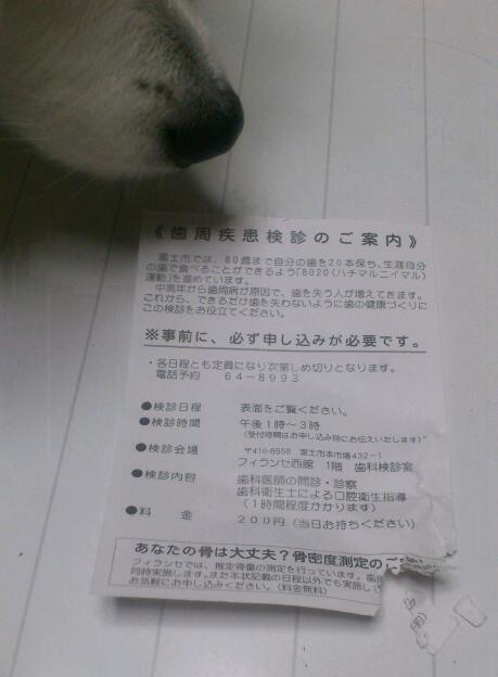 s-郵便物20130606
