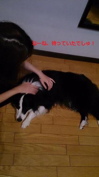 S-きゃっちとねーね20130621-1
