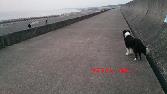 S-きゃっち20130625-2
