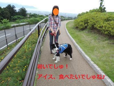 S-きゃっち20130615①