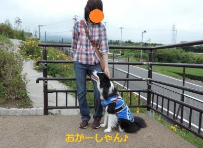 S-きゃっち20130615②