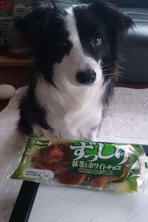 S-きゃっちと抹茶パン20130702