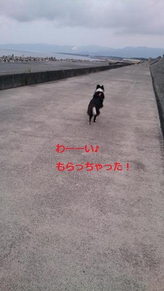 S-きゃっち20130703-5
