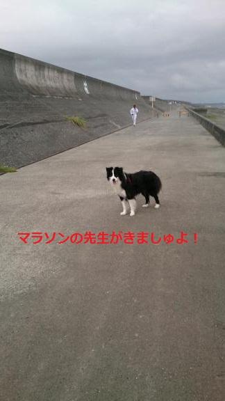S-きゃっち20130703-7