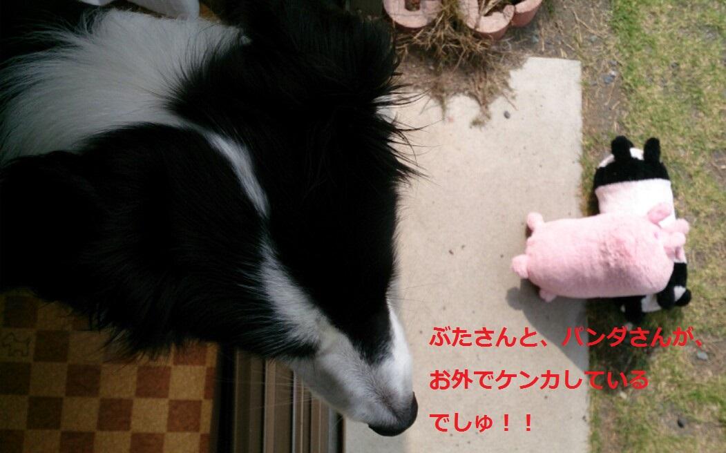 IMG_20130728_073518.jpg